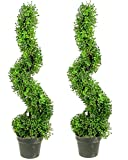 Admired by Nature 2 x 3' Aritificial Boxwood