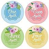 Baby Shower Gift Idea: PAMBO Monthly Baby Stickers | Waterproof Milestone