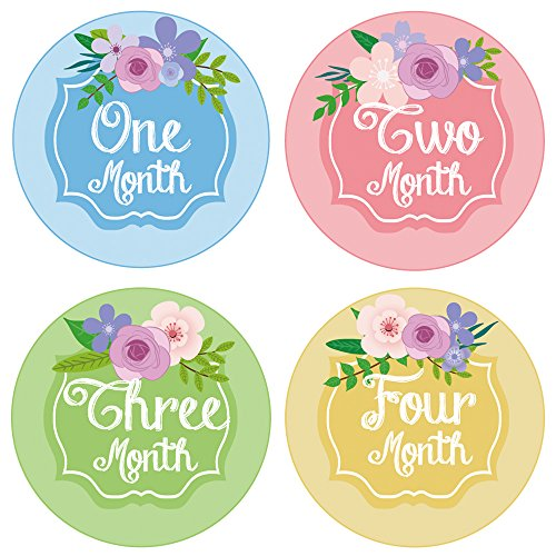 PAMBO Monthly Baby Stickers | Waterproof Milestone Newborn Boys & Girls Flower Stickers | Perfect for Celebrations/Photo Keepsake/Baby Shower Gift Idea | ()