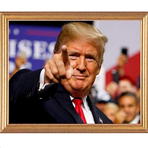 - Diamond Painting Kits Full Drill, C-TOP 5D DIY Rhinestone Crystal Embroidery Pictures Cross Stitch for Home Room Decoration for Adults Kids, Donald Trump President Funny Art Painting 12