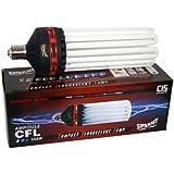 Ampoule CFL Superplant 300W 2100K - Floraison