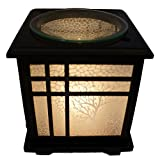 Coo Candles Electric Candle Wax Melt Warmer or Oil Burner Lamp Combo - Bonsai (1)