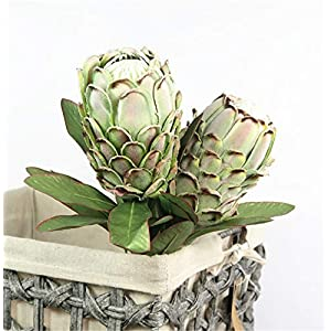 Skyseen 3PCS Artificial Protea Cynaroides Tropical Silk Flower King Protea for Floral Arrangements Home Party Wedding Decor(Green) 33