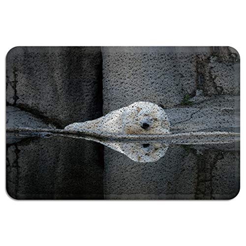 LBDecor Entrance Door Mat Non-Slip Rubber Back Rug Durable Floor Doormat with Shoes Scraper for Scraping Mud, Snow, Sand in High Traffic Areas Resting Polar Bear(18