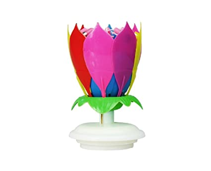 BTZ The Amazing Singing Opening Flower Happy Birthday Candle 2 Pack Colorful