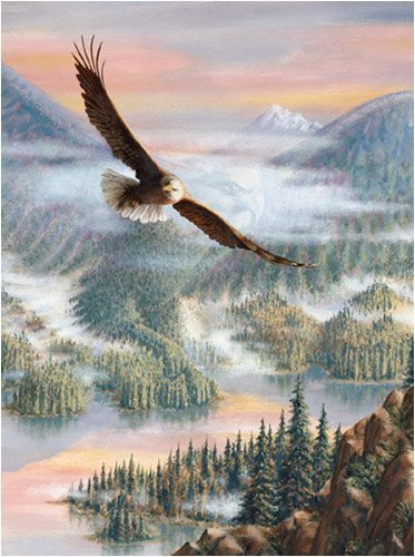 Steve Kushner Eagle Grandeur Jigsaw Puzzle 1000pc by SunsOut