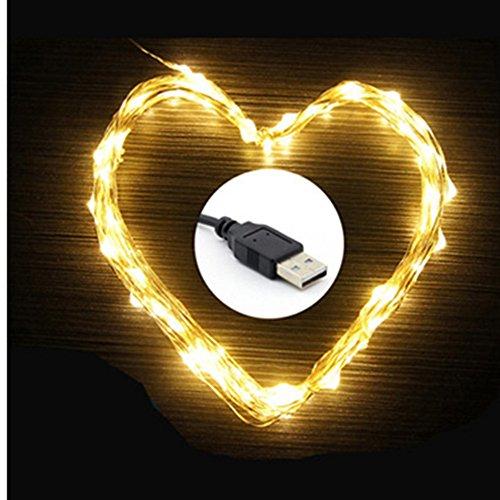 Eleidgs 100 LED 10M/33ft Kupfer Schnur, Wasserdicht Flexibel Lichtleiste mit USB-Anschluss, für Innen- und Außenbereich, Hochzeit, Weihnachtsfeier,(Warmes weiß)