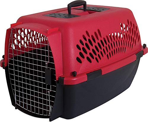 Petmate 21090 Aspen Pet Porter Heavy-Duty Pet Carrier With S