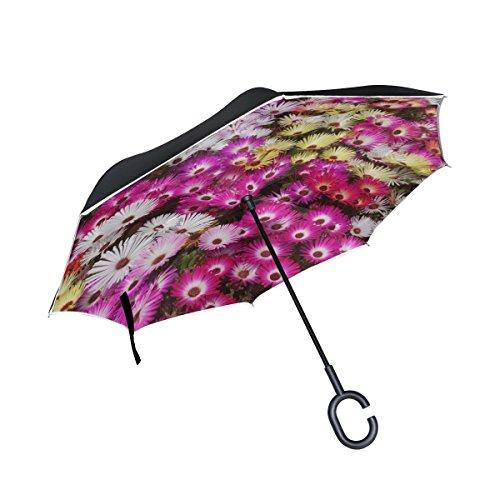 WBSNDB Double Layer Inverted Hwasaham Livingstone Daisy Flowers Garden Umbrellas Reverse Folding Umbrella Windproof Uv Protection Big Straight Umbrella For Car Rain Outdoor With C-shaped - Livingstone Garden