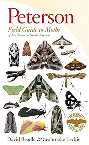 peterson field guide to moths of northeastern north america rh amazon com peterson field guide to birds of north america bird field guide peterson