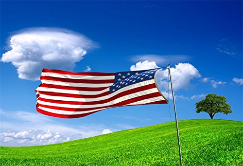 OFILA American Flag Backdrop 5x3ft Flag Day Background 4th of July Independence Day Party Photos USA Symbol Patriotic Parades Banner Memorial Day Photos Digital Video Studio Props