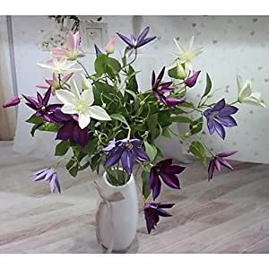 zhENfu Hi-Q 1Pc Decorative Flower Clematis Wedding Home Table Decoration Artificial Flowers 30