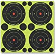Birchwood Casey Shoot-N-C 3 Inch Round 240 Targets 600 Pasters