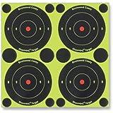 Birchwood Casey Shoot-N-C 3-Inch Round Bull's-Eye Target (Pack of 12)