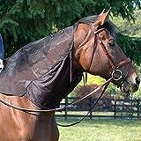 Cashel Quiet Ride Hood Guard, Neck Bug Guard Shield for Horses