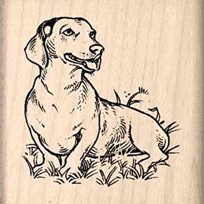 Stamps by Impression Dachshund Rubber Stamp: Arts, Crafts & Sewing