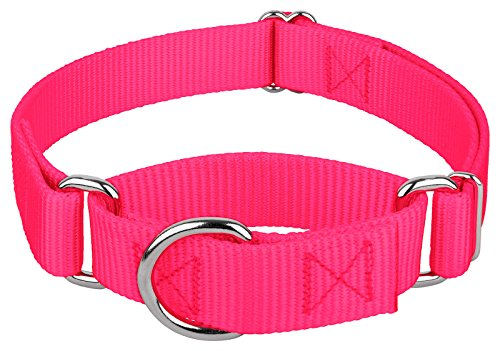 Image of Country Brook Design   1 Inch Martingale Heavyduty Nylon Dog Collar - Hot Pink - Extra Large