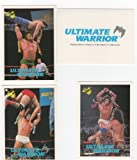 Ultimate Warrior WWF-WWE Wrestling Trading Card Lot