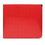 Project Life Honey Edition 12x12 Red Pokla Dot Album