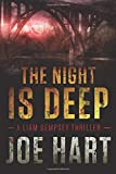 The Night Is Deep (A Liam Dempsey Thriller)