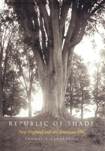 Download Republic of Shade: New England and the American Elm pdf