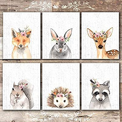 Woodland Animals Nursery Wall Art Prints (Set of 6) - Unframed - 8x10s -  - wall-art, living-room-decor, living-room - 51tjITY9ZAL. SS400  -