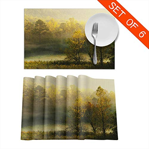Barnardll-Home Placemats Set of 6 Cades Cove - The Great Smoky Mountains National Park Heat-Resistant Placemat for Dining Table Place Mats Anti-Skid Washable Kitchen Table Mats