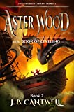 Free eBook - Aster Wood and the Book of Leveling
