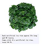 Kalolary 84 Ft 12 Strands Artificial Ivy Garland Leaf Vines Plants Greenery, Hanging Fake Plants, for Wedding Backdrop Arch Wall Jungle Party Table Office Decor (Scindapsus)...