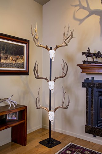 Trophy Tree European Trophy Mount by Skull Hooker – Hang up to 5 Deer Antlers and other Skulls for Display – Graphite Black by Skull Hooker (Image #1)