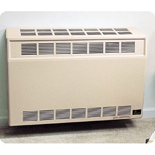 Vented Natural Gas Heater: Amazon.com