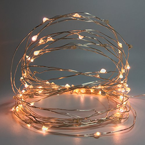 100 Count Mini Leds Fairy Lights USB Plug In Starry String Lights with 8 Function Controller for Indoor Bedroom Wedding Party Christmas Decorations 34Ft Silver Wire (Warm -