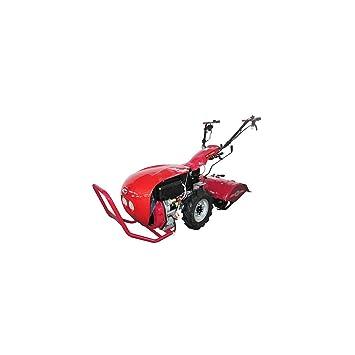 Campeon - Motocultor térmica con rotovateur TM 720gx - Motor 4 ...