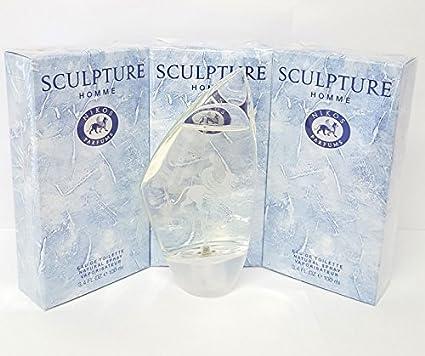 Nikos Sculpture Eau de Parfum, 1er Pack (1 x 100ml): Amazon
