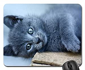 Cat Mouse Pad, Mousepad (Gatos Mouse Pad)