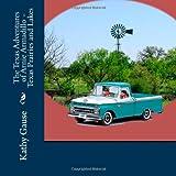 The Texas Adventures of Arnie Armadillo - Texas Prairies and Lakes, Kathy Gause, 1492804746