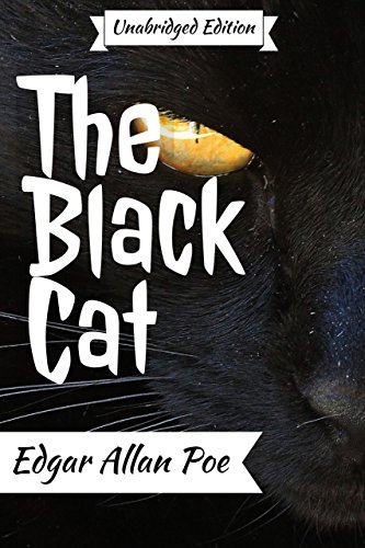 Amazon Com The Black Cat Annotated English Version With