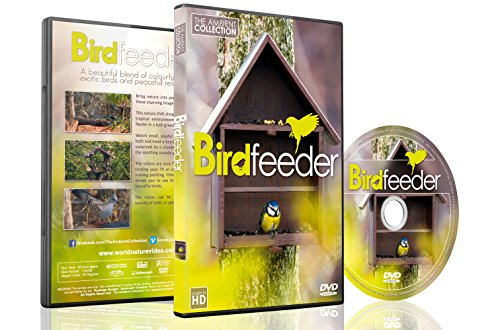 (Nature DVD - Bird feeder and Bird Bath - With Music or Nature Sounds 2016)