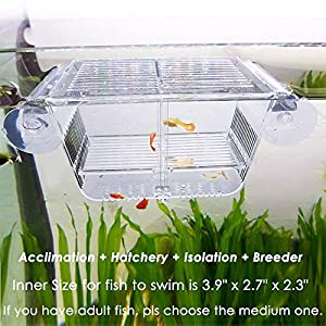 Capetsma Fish Breeding Box, Acrylic Fish Isolation Box with Suction Cups, Aquarium Acclimation Hatchery Incubator for Baby Fishes Shrimp Clownfish and Guppy. Small Size (S) 6