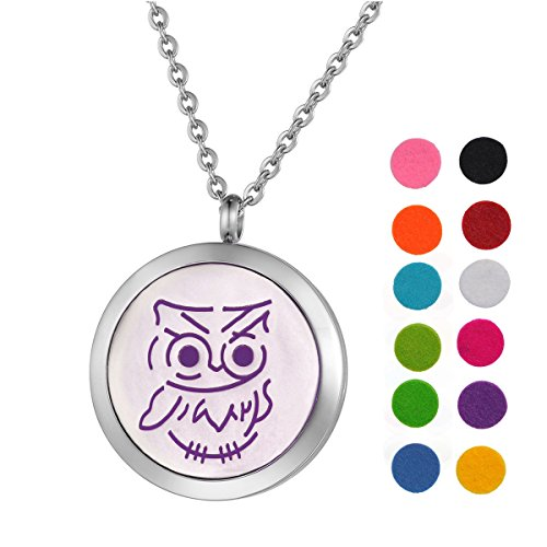 (Stainless Steel Aromatherapy Essential Oil Diffuser Necklace with Owl for Women,Silver Tone)