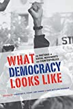What Democracy Looks Like: The Rhetoric of Social Movements and Counterpublics (Albma Rhetoric Cult & Soc Crit)