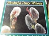 Wonderful Pussy Willows, Jerome Wexler, 0525448675