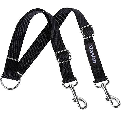 double dog walker leash