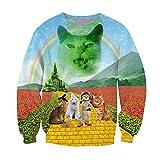 CHIC Women 3D Animal printed Rainbow Roar Cat Sweatshirts Pullover Hoodies (S)