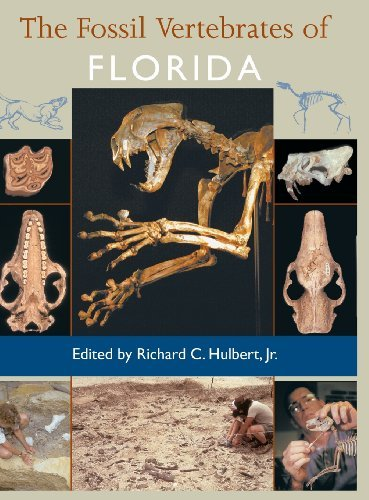 The Fossil Vertebrates of Florida by Richard C. Hulbert Jr. (2001-02-23) (Fossil Legends)