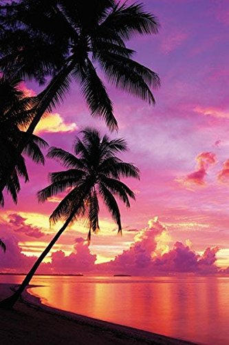Tahitian Sunset, Photography Poster Print