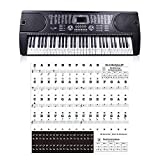 Love Environment Piano Sticker Transparent Piano