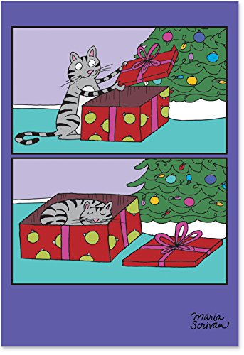 Cat Present - 12 Cute Boxed Merry Christmas Cards with Envelopes (4.63 x 6.75 Inch) - Funny Pet Cat in Box Cartoon, Xmas Happy Holidays Note Card - Notecard Set for Animal Lovers B1187