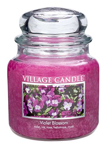 Village Candle Violet Blossom 16 oz Glass Jar Scented Candle, Medium (Ounce Blossom Jar 16)