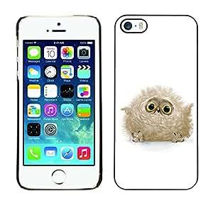 Qstar Arte & diseño plástico duro Fundas Cover Cubre Hard Case Cover para Apple iPhone 5 / iPhone 5S ( Fluffy Owl Baby Bird Grey Big Eyes Cute)